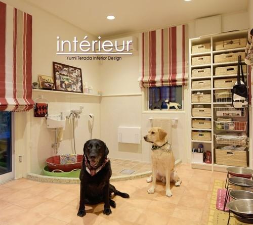 ジンジャー犬の部屋.jpg