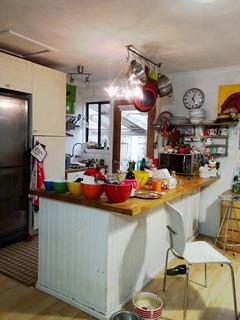 lotti kitchenDSC04956.jpg